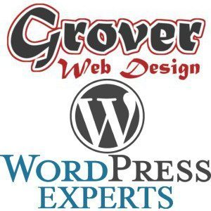 Expert WordPress Custom Development